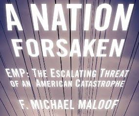 ANationForSakenBook