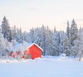 Winter2015